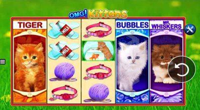 OMG Kittens Reels WMS Scientific Games
