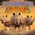 Diamond Rhino